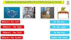 2. Sınıf İngilizce #pets ünitesi eşleştirme etkinliği Turtle, Fish, Pets, Turtles, Tortoise, Pisces, Animals And Pets