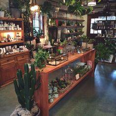Flower shop design, shop layout, plant nursery, retail shop, shopping in . Flower Shop Interiors, Garden Center Displays, Flower Shop Design, Boutique Deco, Shop Layout, Garden Shop, Store Displays, Store Design, Design Shop
