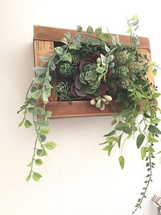 20 Gorgeous Succulent Wall Art To Display Houseplants - Styles & Decor Succulent Outdoor, Succulent Wall Art, Succulent Landscaping, Succulent Gardening, Planting Succulents, Indoor Gardening, Hanging Plants, Indoor Plants, Types Of Succulents