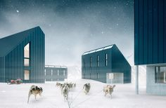 The Backcountry Hut Company by Leckie Studio Architecture + Design. Flat packed cabins to be built like IKEA furniture.