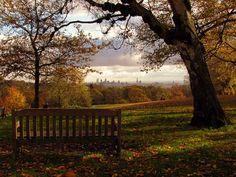 Hampstead Heath- I miss Sunday morning walks through the Heath.....