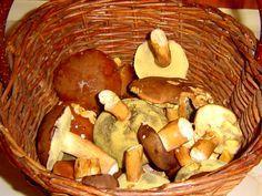 Houby nakládané ve sladkokyselém nálevu jsou pikantní pochutina, která kromě práce a surovin na lák nic nestojí. Jejich kalorická hodnota je zanedbatelná, tak si je mohou dopřávat i lidé bojující s nadváhou. Stuffed Mushrooms, Homemade, Canning, Vegetables, Food, Arrows, Recipies, Stuff Mushrooms, Home Made