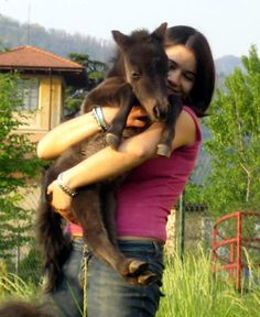 Oh, how sweet, to be able to hold a little foal in your arms!