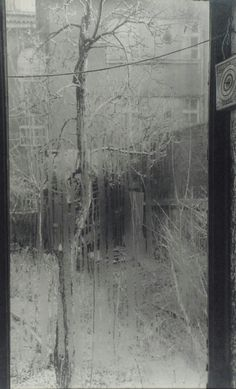"""From the Series """" The Window of my Studio"""""""