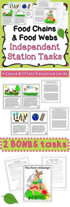 Print and laminate four cause and effect cards and copy student response sheets to supplement your unit. Focus on how changes in a food chain or food web can effect an ecosystem.
