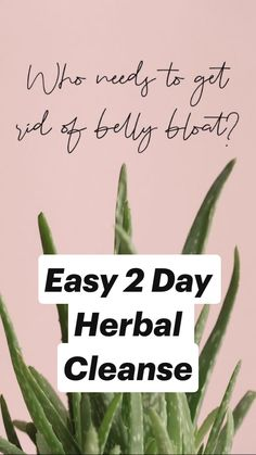 Body Cleanse Diet, Herbal Cleanse, Gut Health, Health And Wellbeing, Sugar Detox Diet, It Works Products, Bloated Belly, Sugar Cravings, Healthy Eating Tips