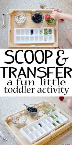 Scoop and Transfer - Busy Toddler - Preschool activities - Toddler Learning Activities, Games For Toddlers, Montessori Activities, Infant Activities, Kids Learning, Montessori Room, 18 Month Old Activities, Maria Montessori, Outdoor Toddler Activities