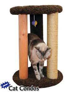 Shop for New Cat Condos Round Multi-scratcher with Sisal Rope. Get free delivery On EVERYTHING* Overstock - Your Online Cat Supplies Store! Get in rewards with Club O! Pet Vacuum, Cat Activity, Sisal Rope, Plush Carpet, Cat Scratching Post, Wood Post, Cat Scratcher, Cat Condo, Pet Furniture
