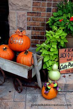 Halloween Pumpkin id