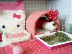 More Hello Kitty cage ideas!