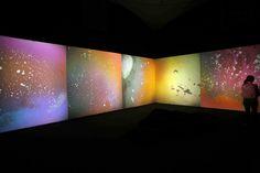 Liquid Crystal Environment 2005–2009, Gustav Metzger
