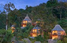 A night's sleep in these trees will set you back around $518 (£390), but you will have a personalize... - Keemala Hotel