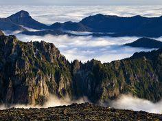 Picture of Mount Rainier National Park, Washington