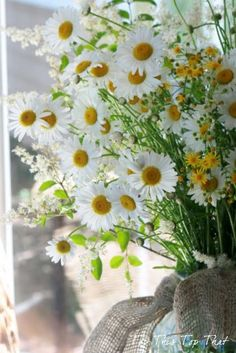 Daisy Bouquet ~ Wrapped in burlap.they always remind me of Mike. Happy Flowers, My Flower, Fresh Flowers, Beautiful Flowers, Simply Beautiful, White Flowers, Daisy Hill, Sunflowers And Daisies, Yellow Daisies
