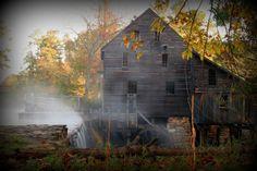 Yates Mill, North Carolina  ~ Photo by...Corey Cradle©