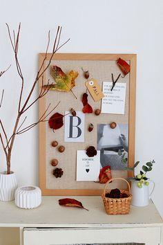 ★落ち葉や木の実をピンにしてコルクボードディスプレイ|インテリアと暮らしのヒント