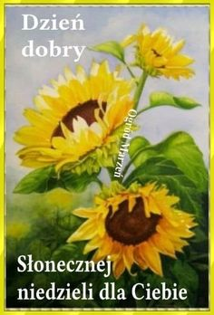 Sunday, Plants, Polish, Pictures, Domingo, Plant, Planets