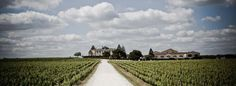 Finding value in Bordeaux can be difficult, but it's not impossible, thanks to Wine-Searcher.