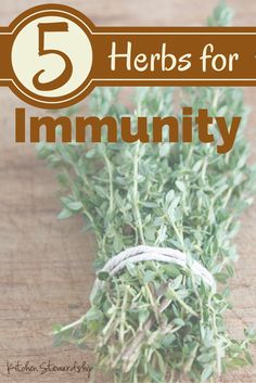 Top 5 Herbs for Boosting Immunity :: via Kitchen Stewardship | herbology, herbalism, healing plants, herbal medicine