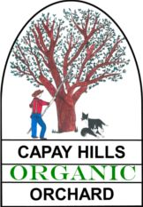 Our organic almonds are farmed using sustainable, organic methods. We are a true family farm and sell only our own products. We sell raw almonds, smoked almonds and almond butter. Raw Almonds, Candida Diet, Cooking Ingredients, Almond Recipes, Shopping Sites, Almond Butter, Organic, Doctors, Olive Oil