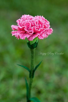 Ravelry: Crochet Carnation Flower Pattern by Happy Patty Crochet