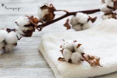 Ατοπική δερματίτιδα/έκζεμα σε παιδιά και μωρά - τι βοηθάει πραγματικά; Stuffed Mushrooms, Stuff Mushrooms