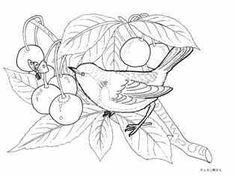 蝶と小鳥とさくらんぼの画像の下絵、画像