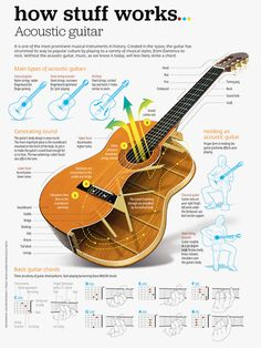 Infographic all about the acoustic guitar