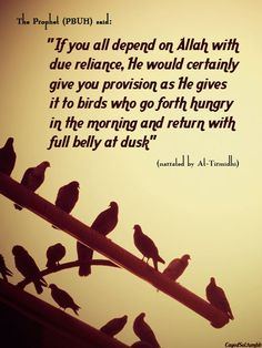 If you all depend on Allah with due reliance, He would certainly give you provision as He gives it to birds who go forth hungry in the morning and return with full bell at dusk.