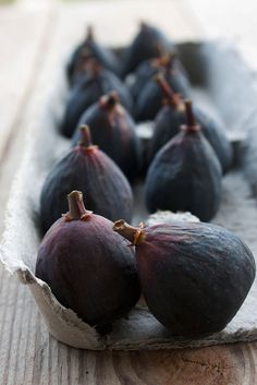 I love figs. We used to have several trees in VA and loved eating them and making fig bread. Oh, yummy! We haven't been able to find fresh ones since we moved to FL 35 years ago. I miss fresh figs. :(