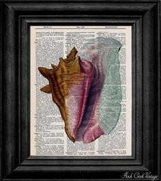 Conch Shell Nautical Decor Vintage Dictionary Print Art Print