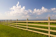 There are many different types of fences know what is best for your homestead. Here are five common homestead fencing mistakes you can easily avoid. Wood Fence Post, Farm Fence, Diy Fence, Fence Posts, Fence Ideas, Stock Fencing, Garden Fencing, Garden Tools, Fenced Garden