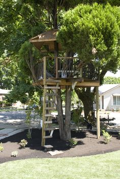 Tree fort made from scrap materials of the REX Project