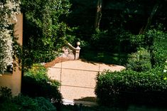 Reflection of a Garden