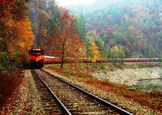 Check out Great American Country's list of the best scenic train rides in the…