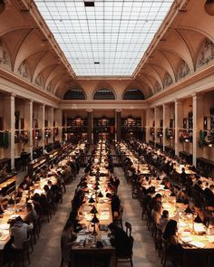 27 Best Yale Law School Ideas Yale Law School Law School Yale