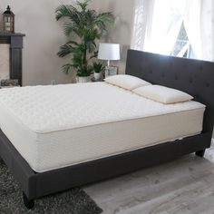 Shop for Hevea Bliss 9-inch Queen-size Flippable Natural Latex Mattress. Get free shipping at Overstock.com - Your Online Furniture Outlet Store! Get 5% in rewards with Club O! - 22457597