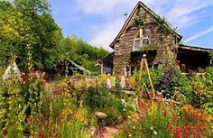 gorgeous handbuilt house I saw on Grand Designs. The Woodsman's Cottage. I think it's in Sussex