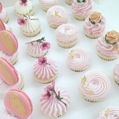 nectar and stone Cupcakes Design, Cupcake Cake Designs, Fun Cupcakes, Cupcake Cookies, Köstliche Desserts, Delicious Desserts, Nectar And Stone, Buttercream Cupcakes, Cupcake Flavors