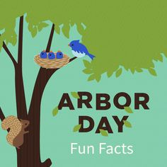 What is the tallest tree in the world? Did you know 1 tree can supply the oxygen needed for a family of 4 for a day? Celebrate Arbor Day with more fun facts! Family Of 4, Arbour Day, Educational Games For Kids, Weekend Fun, Fun Learning, Fun Ideas, More Fun, Fun Facts, Preschool