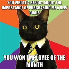 you wrote a report about the importance of purchasing me a new chair you won employee of the month | Business Cat | Meme Generator