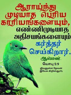 Biblical Verses, Bible Verses, Scripture Verses, Bible Scripture Quotes, Bible Scriptures, Scriptures
