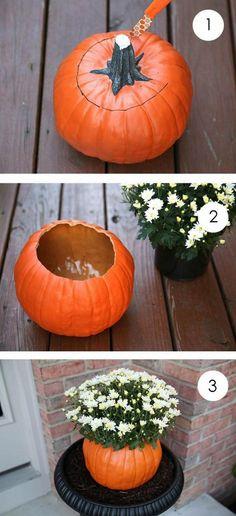 halloween deco idea kuerbis vase chrysanthemums