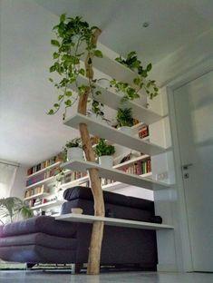 DIY Tree Shelves