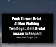 Punk Throws Brick At Man Walking Two Dogs… Gets Brutal Lesson In Respect