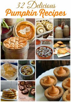 The air is crisp and there's nothing quite like the scent of baking to perfectly fill the fall air. You'll love these 32 Pumpkin Recipes!