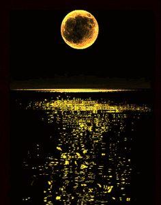 Full moon in the ocean (Lua cheia no oceano) Stars Night, Stars And Moon, Moon Pictures, Beautiful Moon, Super Moon, Moon Art, Blue Moon, Amazing Nature, Night Skies
