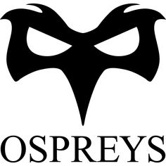 Ospreys Primary Logo on Chris Creamer's Sports Logos Page - SportsLogos. A virtual museum of sports logos, uniforms and historical items. Welsh Rugby, Swansea, Arizona Cardinals, Liverpool Fc, History, Bird Aviary, Image, Sports Logos, Historia