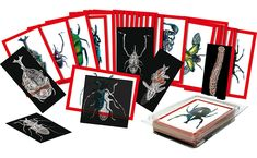 Get three views of your favourite insects-the top, the bottom and the inside. Match up all 36 insect x-rays to the double sided, sturdy picture cards. The teacher guide details each insect. 36 double sided picture cards and 26 x-rays. Ages 4 and up. Picture Cards, Photo Cards, Insect Anatomy, Stem Curriculum, Discount School Supply, Science Kits, Science Crafts, Science Worksheets, Preschool Science