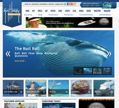 Consumer Magazine Web Design - Redesign by Advontemedia